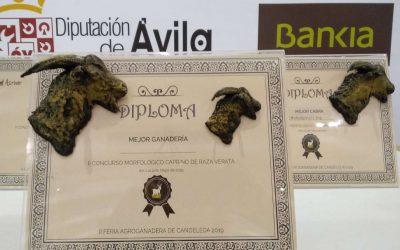2º Concurso Morfológico de la Feria Agroganadera de Candeleda