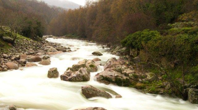 El origen de la Cabra Verata está ubicado en la sierra de Gredos, en el Sistema Cental, un entorno de naturaleza y agua.